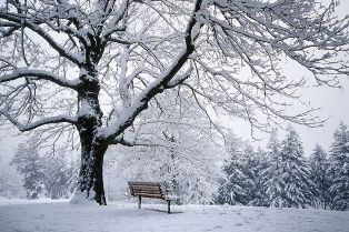 Что и как фотографировать зимой в снежную погоду?